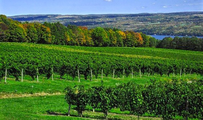Villa Bellangelo, Seneca Lake, New York