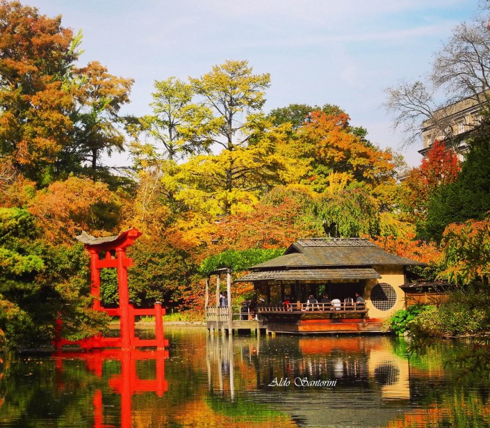 Japanese Hill and Pond, Brooklyn Botanic Garden, New York